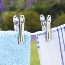 Stainless Steel Pegs Set